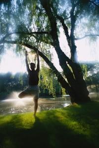 Man Performing Yoga by Lake