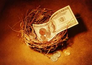 money-nest